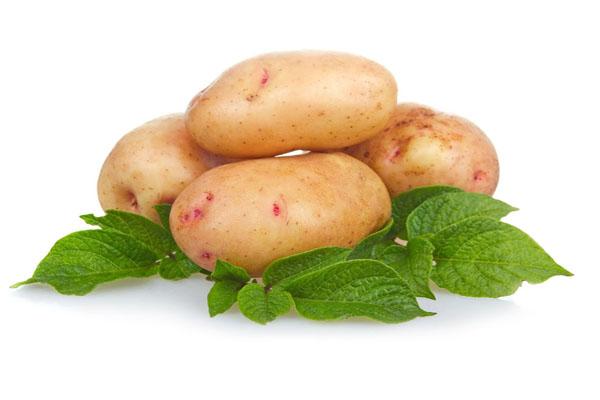 Молодой картофель, Россия, урожай 2017